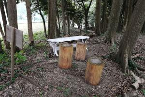 丸太のベンチがあります