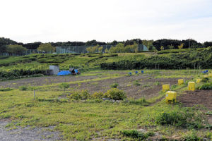 農園は25平米ほどで月額3000円ほど
