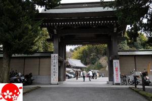 ~1年目の祈り~鎌倉・建長寺