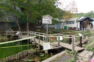 第5回 『金沢区歴史探訪』