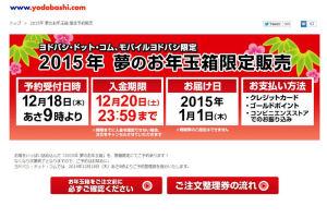 ヨドバシ.com 2015年 夢のお年玉箱