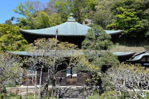 鎌倉散歩のblog_2