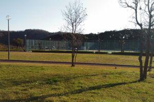 湘南国際村西公園秋色風景