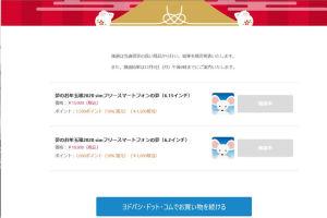 ヨドバシ.com2020お年玉箱当選