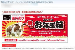 ヨドバシ.com 2021年夢のお年玉箱