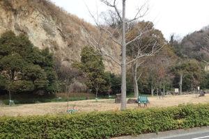 2012年3月に撮影の弘前城のさくら