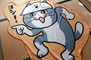 猫のタオルを掛けると